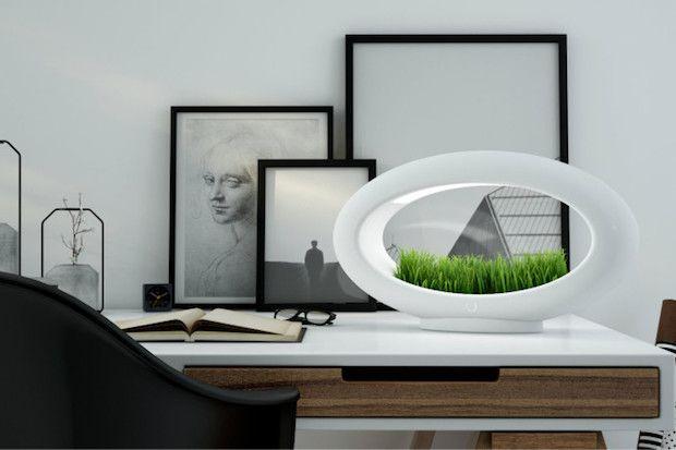Grasslamp als Tischleuchte