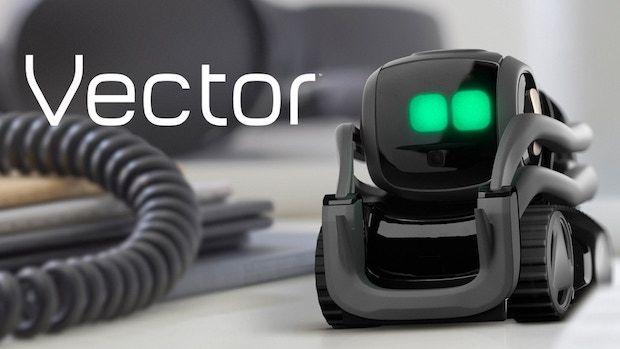 Vector Roboter by Anki