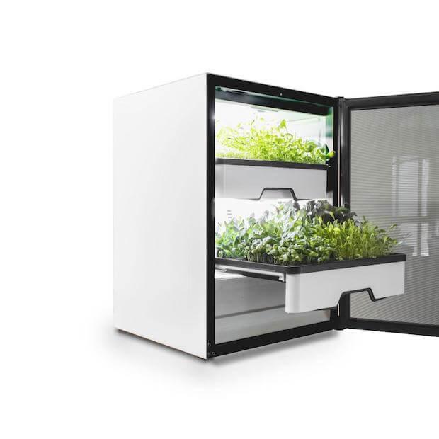 Plantcube - Vertical Farming