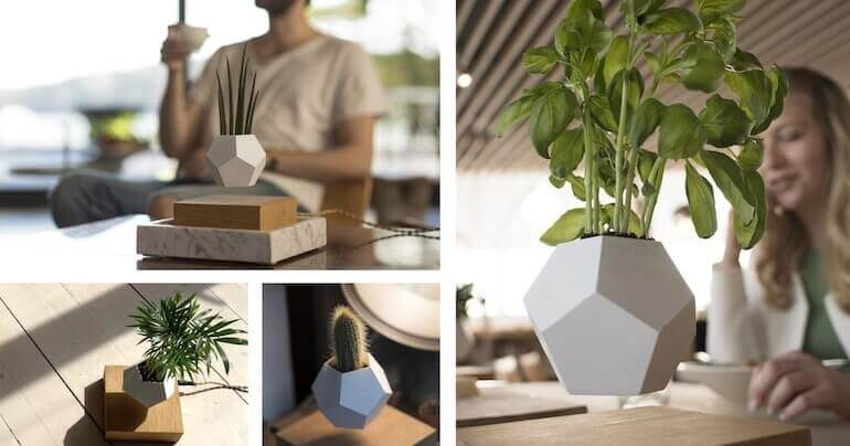LYFE - magnetische Blumentopf