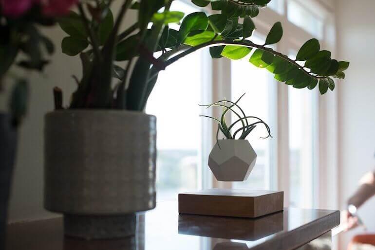 LYFE - der schwebende Blumentopf