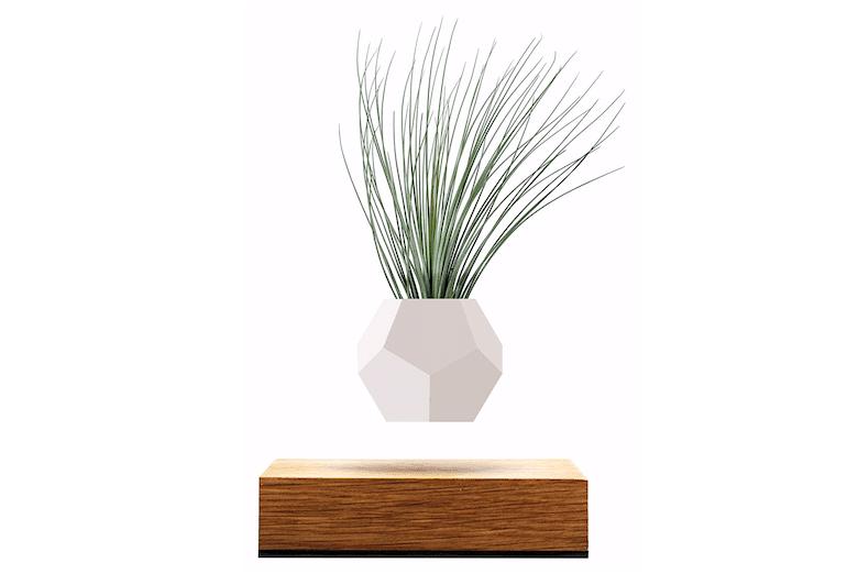 LYFE - schwebender Pflanzentopf