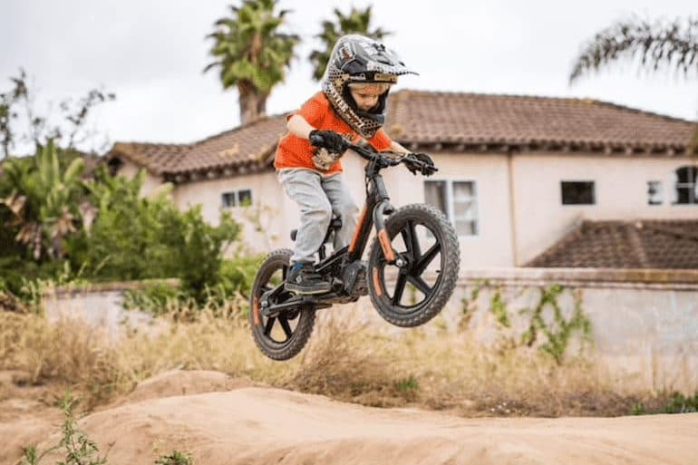 Electric Balance Bike von Harley Davidson