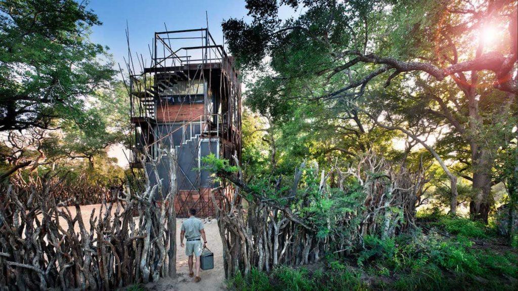 Ansicht Ngala Treehouse - Eingang