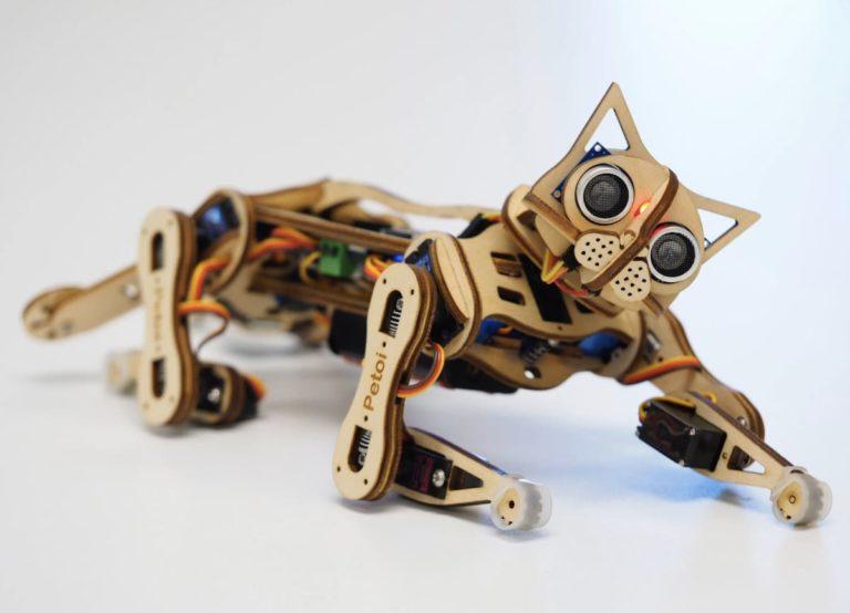 Nybble Roboter-Katze von Petoi