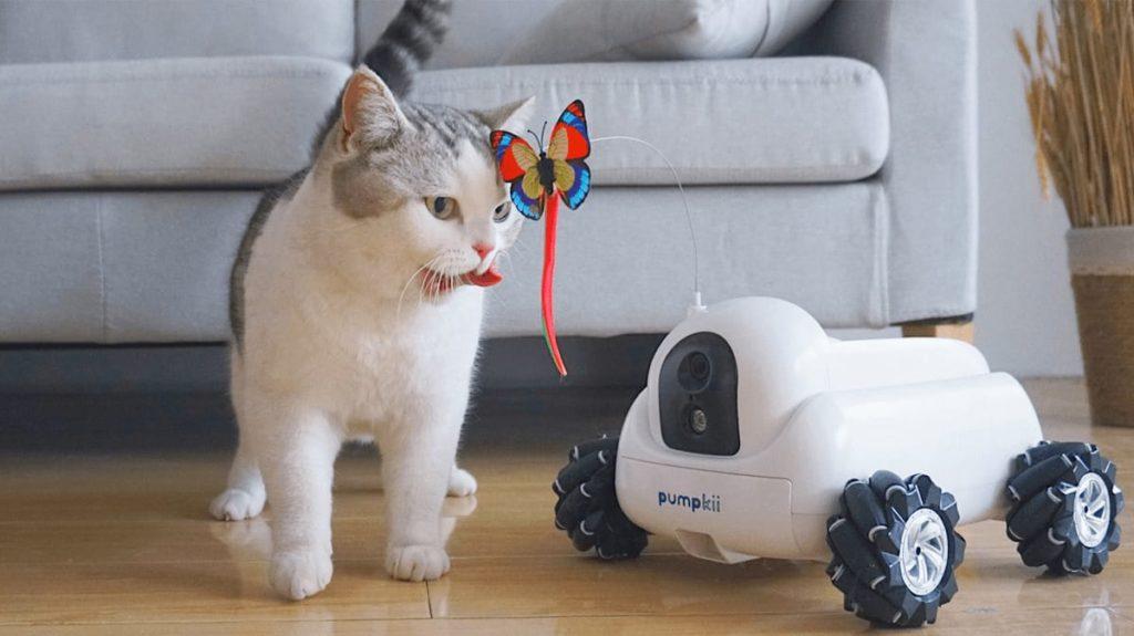 Pumpkii Roboter für Haustiere