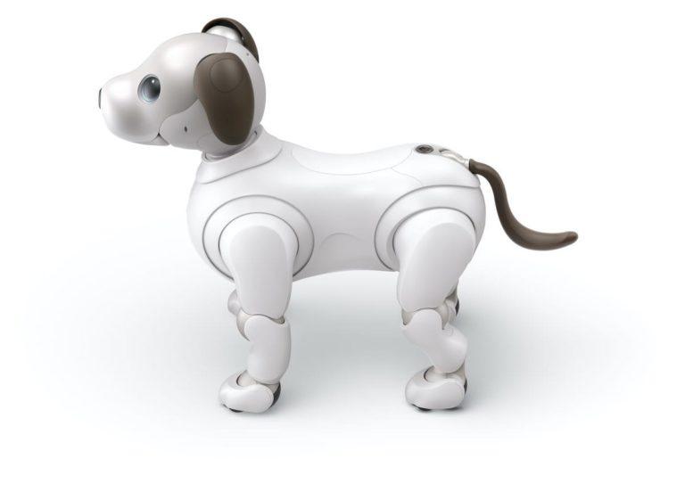 Der Roboter-Hund Aibo