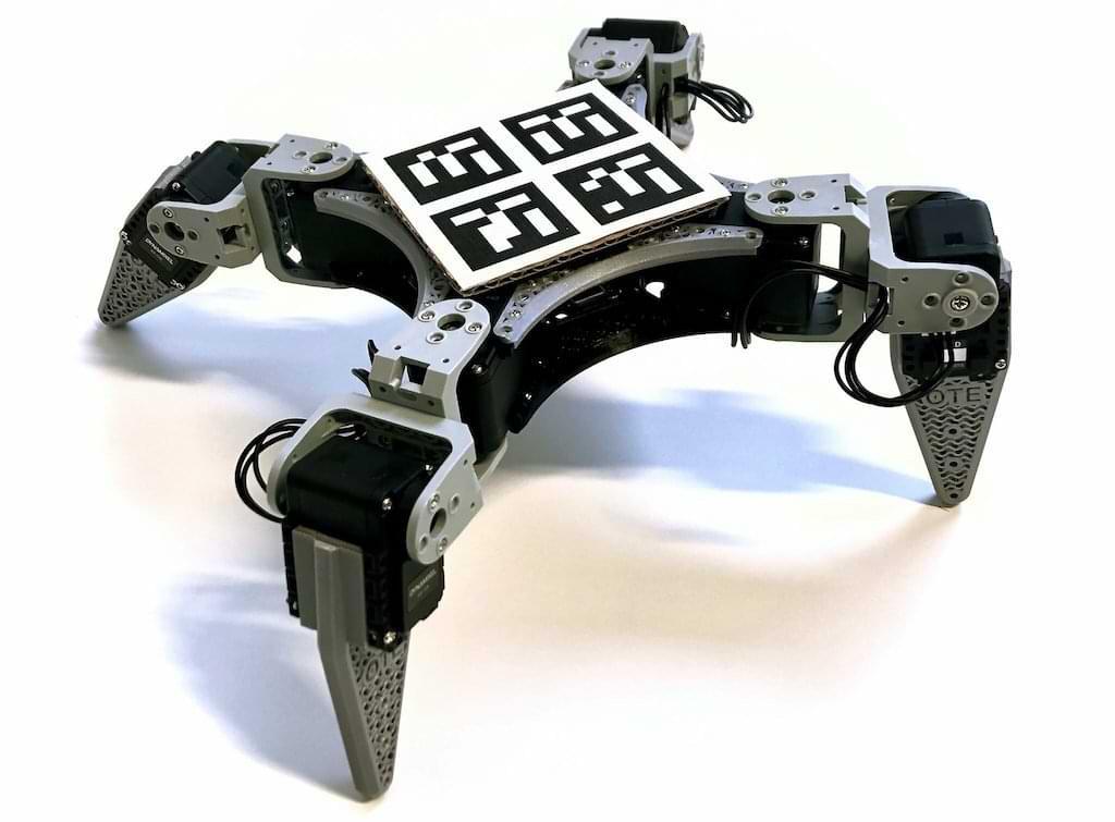 RealAnt V1 Roboter von OTE Robotics
