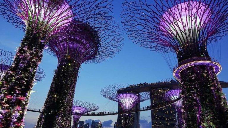 Moderne Architektur - Zukunftsvision Garden by the Bay