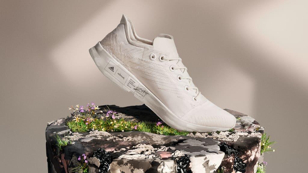 Allbirds Sneaker von Adidas