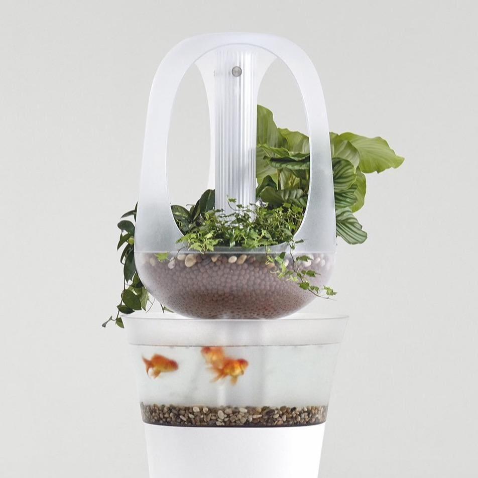 Eva Smart Aquaponics Ecosystem