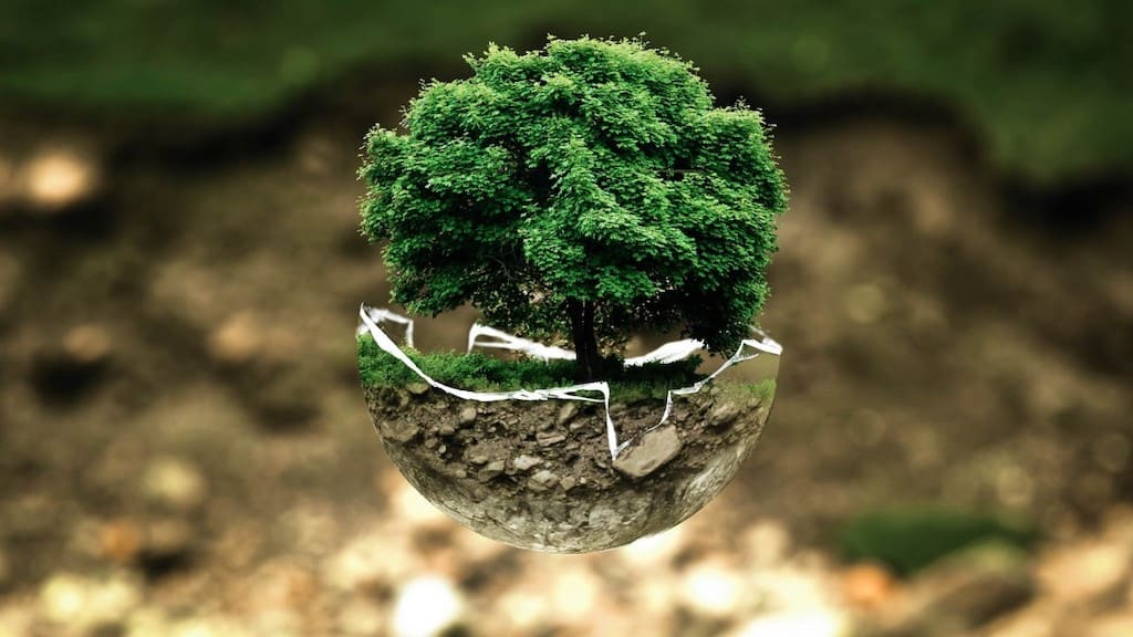 Environmental Protection - UmweltschutzEnvironmental Protection - Umweltschutz