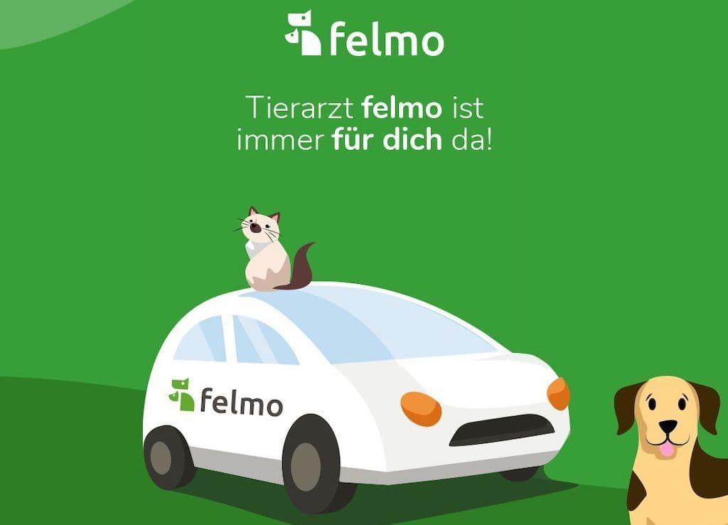 felmo - die mobilen Tierärzte