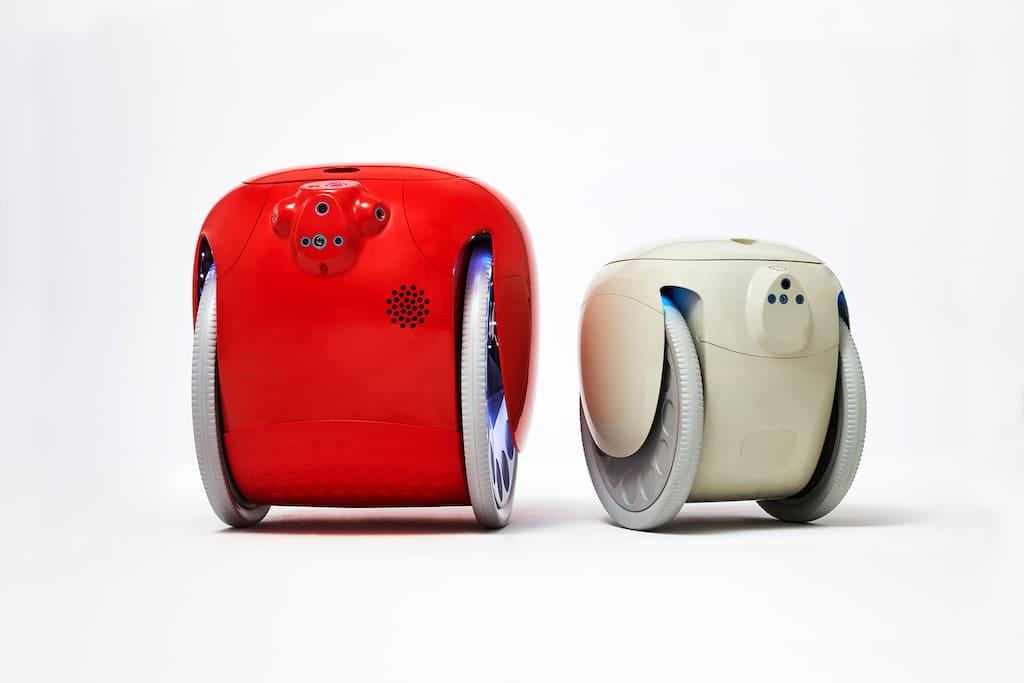Gita und Gita Mini Roboter